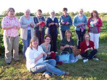 knitters field2